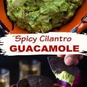 2-pin photo for Spicy Cilantro Guacamole v2