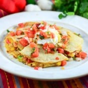 Chicken Fajita Quesadillas with Pico De Gallo Salsa