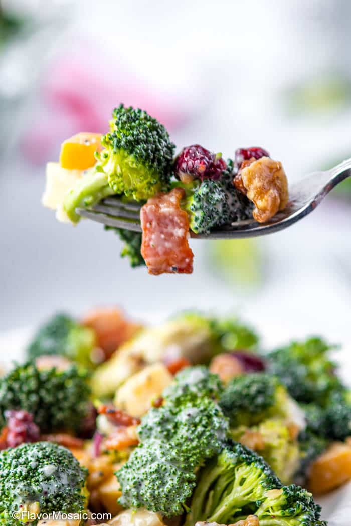 Single Bite of Broccoli Salad with Dried Cranberries, Bacon, Cheddar, Gouda, and Walnuts
