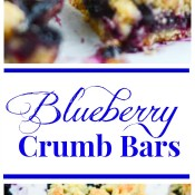 Blueberry Crumb Bars Imag