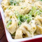 Tortellini Alfredo with Broccoli