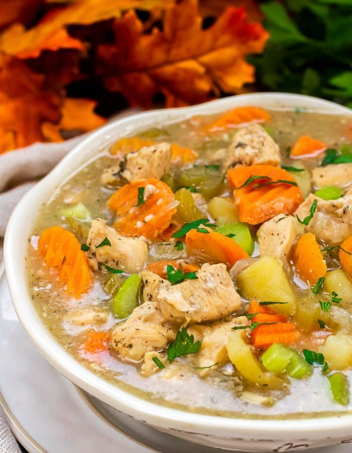 White bowl of Instant Pot Chicken Stew on white plate with parsley and fall colored leaves in the background.