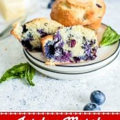 Jordan Marsh Blueberry Muffins 1-Photo Red Label Pin Flavor Mosaic