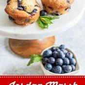 Jordan Marsh Blueberry Muffins 1-photo Red Label Pin Flavor Mosaic 1
