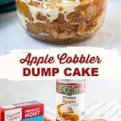 Apple Dump Cake-6-2-Photo Pin