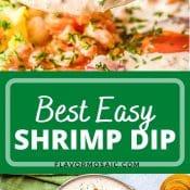 2-photo pin for Best Easy Shrimp Dip