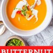 Instant Pot Butternut Squash Bell Pepper Soup