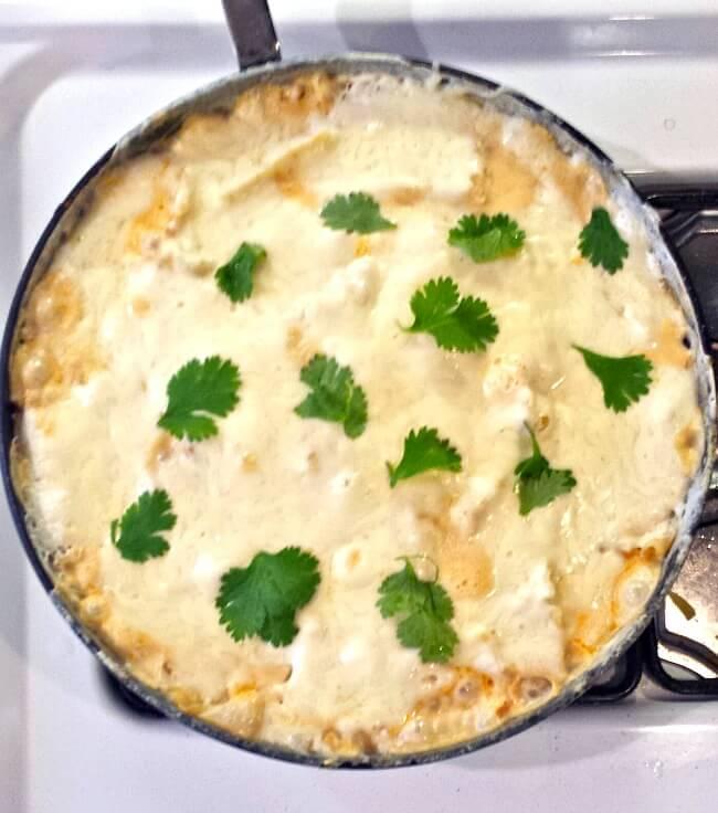 Top 15 Cajun Recipes for Mardi Gras - Creamy Cajun Chicken lasagna